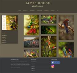 James Hough Wildlife Artist